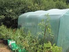 hanson garden