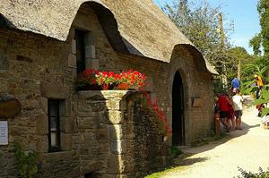 Thatch & limestone cottage