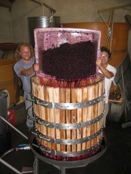 Winemaking in France