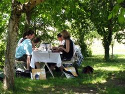 Wine pairing lunch