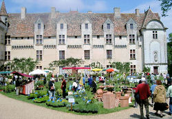 Neuvic Château with exhibitors
