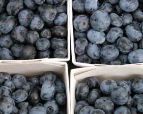 Imported fruit