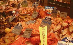 Shellfish Counter