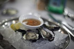 Felix oysters