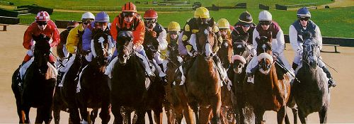 French horse racing betting rules binary options nadex 300 sec