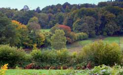 Autumn in Limousin