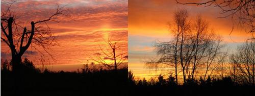 photos-provided-by-A-McKenzie-and-V-Goddard