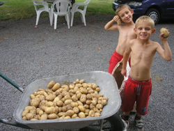 Chaz-and-Henry-with-yet-more-potatoes