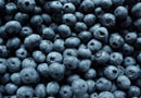 Limousin Blueberries