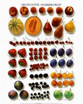 5-summer-fruit