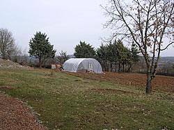 View of the Garden - Jan 05