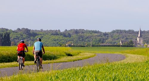 Popularity of cycling holidays in France