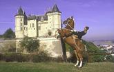 Saumur in the Pays de la Loire