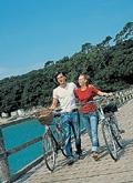 france pays de la loire couple with bikes