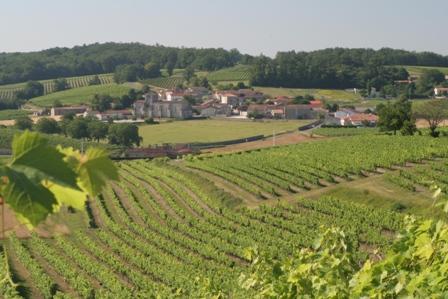 Cognac Countryside