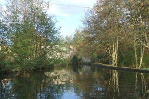 Simms mill pond