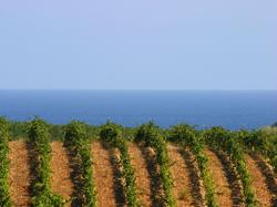 Corse - Corsica
