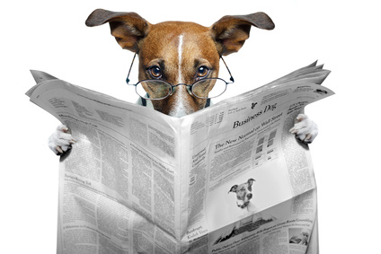 dog reading newspaper carousel