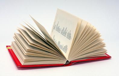 dictionary/ glossary