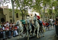 the running the horses during Ceret de Toras