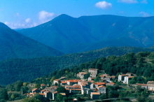 At the foot of Mount Aigoaul, Cevennes, Languedoc
