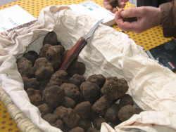 Truffles at Uzes Truffles fête