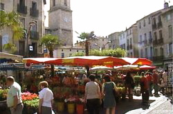 Pezenas market is a local highlight