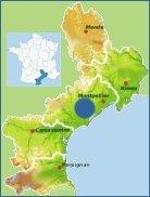 Pezenas Property Languedoc Roussillon