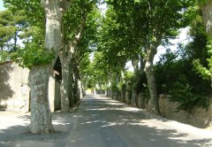 Vaunage Property Languedoc Roussillon