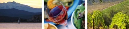Investing in Languedoc-Roussillon
