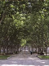 a park in Perpignan