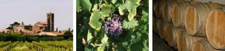 AOC Wines Aude Languedoc-Roussillon