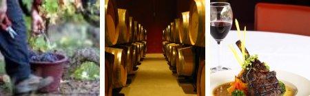 Autumn Wines Languedoc-Roussillon