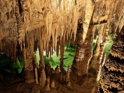 Caves in Languedoc Roussillon