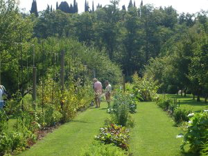 limoux-garden.jpg